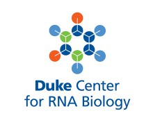 Duke Center for RNA Biology